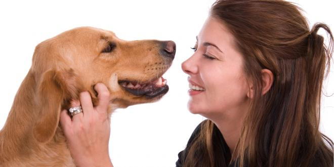 Woman looking at dogs teeth.